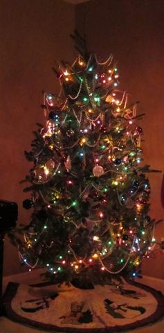 Tree1 [640x480]
