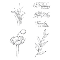Stampin' Up! Simply Sketched hostess set